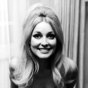 sharon-tate-9542251-1-402